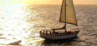 Zeilboot Trips
