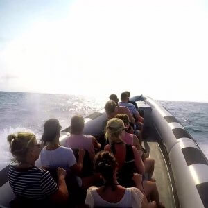 Powerboat-Klein-Curacao
