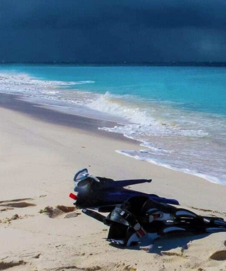Klein-Curacao-Trip-Ocean-Encounters-24